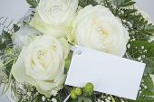 image of mother-of-pearl  - Various bouquets for example for Mother - JPG