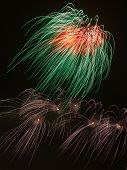 picture of night-blooming  - spectacular beautiful bright fireworks a fire blooming colorful flowers in the night black sky vertically - JPG