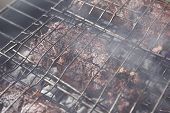 pic of charcoal  - grilled roast meats beef lamb fillet ribs on bbq grid over charcoal - JPG
