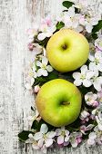 picture of apple blossom  - apples and apple tree blossoms on a old wooden table - JPG