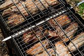 image of brazier  - Chunks of pork cooked on the brazier during picnic - JPG