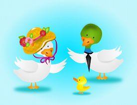 pic of canard  - Illustration of family ducks on light blue background - JPG