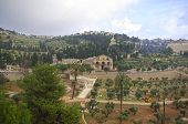 picture of gethsemane  - Church of all nations and Mount of olives Jerusalem Israel - JPG