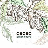 Cacao Template. Vector Nature Background. Art Hand Drawn Botanical Tree, Bean, Tropical Fruit, Leaf. poster