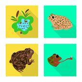 Bitmap Illustration Of Wildlife And Bog Symbol. Set Of Wildlife And Reptile Stock Bitmap Illustratio poster