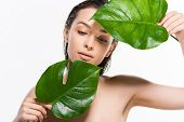 Beautiful Wet Nude Young Woman Looking At Green Palm Leaves With Water Drops Isolated On White poster