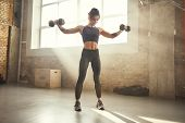 Perfect Body. Young Athletic Woman In Sportswear Exercising With Dumbbells While Standing In Front O poster