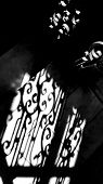 Black And White Photography. Blurry Contours Ornate Shadows On Stone Stairs Of Classic Architecture  poster