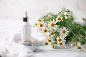 Organic Vegan Natural Cosmetics Concept. Chamomile Flowers And Cosmetic Bottles Of Cream And Serum E poster