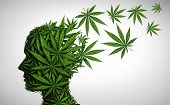 Marijuana Effects On The Brain And Cannabis Mood Altering Chemicals Or Psychology And Drugs Concept  poster