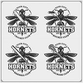 Cricket, Baseball, Lacrosse And Hockey Logos And Labels. Sport Club Emblems With Hornet. Print Desig poster