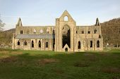 stock photo of chepstow  - The majestic and wonderful Tintern Abbey Shot in the afternoon - JPG