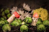 stock photo of midget  - Concept Farmer works on the field wine cork figures - JPG