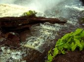 foto of canaima  - River of Canaima Falls next to the large waterfall in Venezuela - JPG