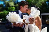 Kiss The Bride And Groom With The Pigeons