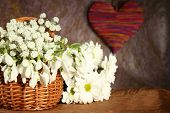 Beautiful snowdrops in basket with heart, on brown background