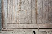 picture of termite  - Termite trespass in the wood old door - JPG
