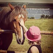pic of nostril  - instagram of young girl petting horse in a field with inspirational quote - JPG