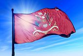 stock photo of artillery  - 141st Field Artillery Regimental colors waving on the wind - JPG