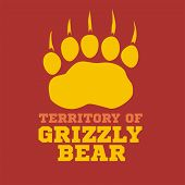 picture of grizzly bear  - footprint grizzly bear on dark background    - JPG
