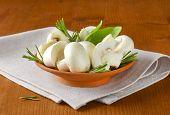 picture of portobello mushroom  - bowl with mushrooms - JPG
