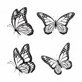 picture of flying-insect  - Set of Silhouette Black Butterflies Isolated for Spring - JPG