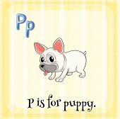 foto of letter p  - Flashcard letter P is for puppy - JPG