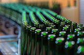 foto of liquor bottle  - Many bottles on conveyor belt in factory  - JPG