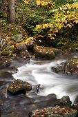 pic of gatlinburg  - Flowing Water in Roaring Forks in Great Smoky Mountains National Park near Gatlinburg Tennessee