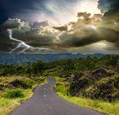 Постер, плакат: Кривой дороге через джунгли