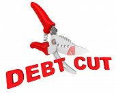 Concept Of Debt Cuts. Pruner Cuts Red Text Debt Cut. The Concept Of Debt Cuts. Isolated. 3d Illustra poster