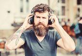 Rhythm For Walk. Man Bearded Hipster Headphones Listening Music. Hipster Enjoy Excellent Sound Song  poster