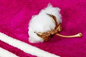 picture of boll  - Boll of cotton terry towels in the crimson and white - JPG