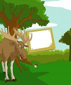 image of shroom  - Vector image of wood background with plate and elk - JPG