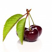 Fresh Cherries With Leaf Isolated On White Background