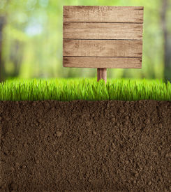 picture of underworld  - soil cut in garden with wooden sign - JPG