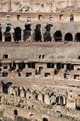 The Colosseum Ruins, Rome, detail