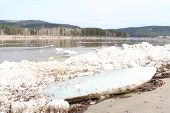 picture of kan  - Kan River after an ice drift in Zelenogorsk - JPG