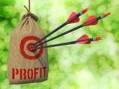 stock photo of profit  - Profit  - JPG