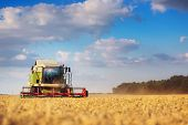 stock photo of combine  - Working Harvesting Combine in the Field of Wheat - JPG