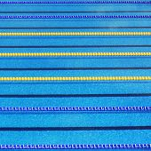 pic of lame  - Image Of The Swimming Pool With Lane Ropes - JPG
