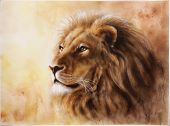 stock photo of lion  - A beautiful airbrush painting of a lion head with a majesticaly peaceful expression - JPG