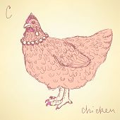 foto of fowl  - Sketch chicken hipster in vintage style vector - JPG