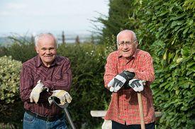 picture of spade  - two senior gardener with spades standing in garden - JPG