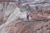 image of petrified  - Woman Hiking Blue Mesa At The Petrified Forest National Park - JPG