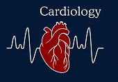picture of cardiology  - Red human heart with wave frequency for medical and cardiology concept design - JPG