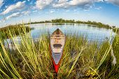 image of collins  - red canoe on a lake shore  - JPG