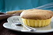 pic of sponge-cake  - close up sponge butter cake on dish - JPG