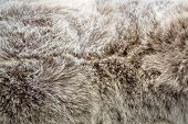 pic of puffy  - texture of grey color puffy fabric background - JPG