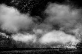 stock photo of cade  - Eerie fog and mist covering the hills of Cade - JPG